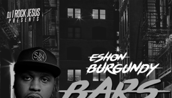ESHON BURGUNDY BARS copy
